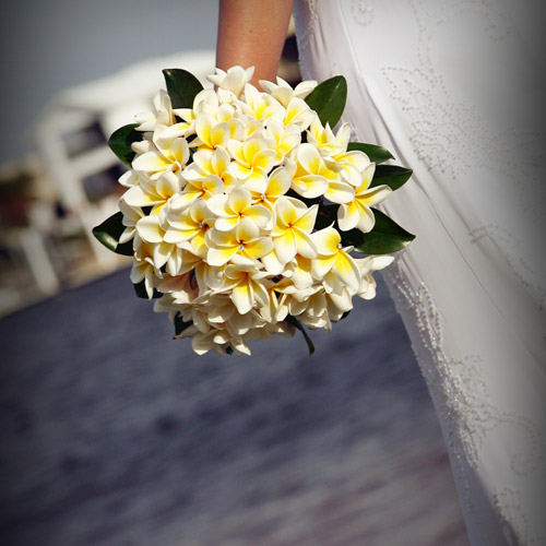 Beautiful Frangipani Bouquet