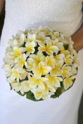 Yellow Frangipani Bouquet