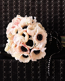 Black Tied Anemones
