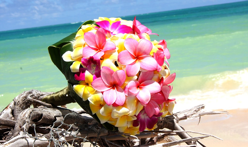 Yellow and Pink Frangipani Bouquet - Bouquet Wedding Flower