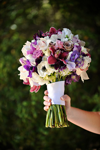 Gorgeous Whites and Purples