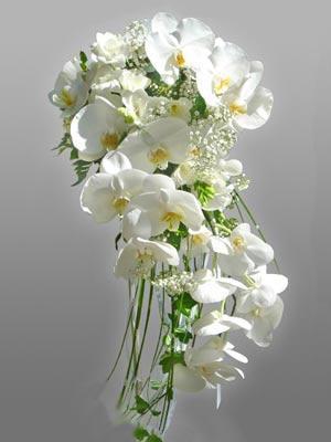 White Orchids Cascade Bouquet Wedding Flower