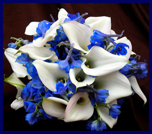 Delphinium and Callas