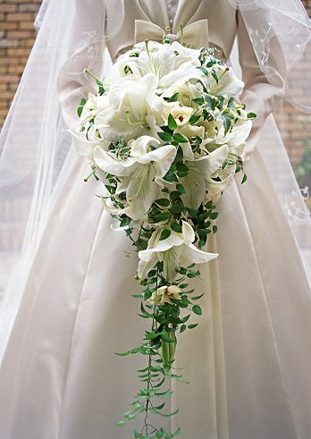 Cascading bridal bouquet with white lilies and green leaves