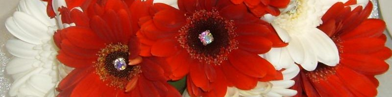 White and Red Gerbera Bouquet