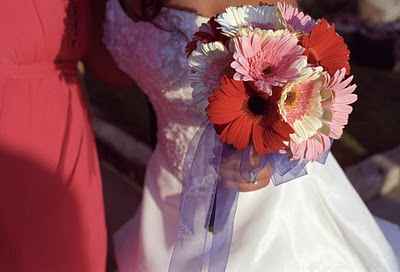 Pink, Red and White Gerbera