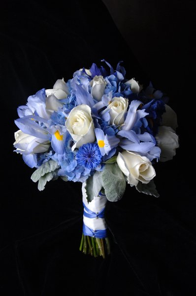 Blue Iris and White Roses