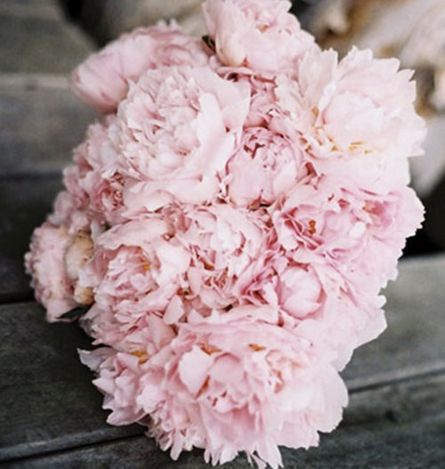 Light Pink Peonies Bouquet