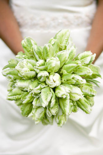 Green Parrot Tulip Bouquet