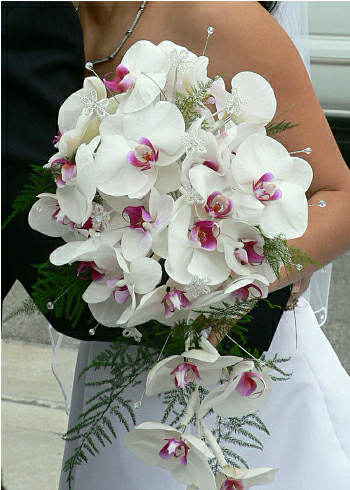 Beautiful cascading bridal bouquet made of white orchids with pink centers