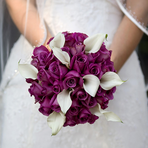 White Calla and Fuchsia Roses