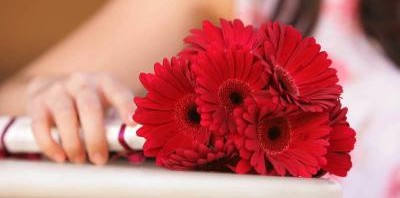 Simple Red Gerbera Bouquet