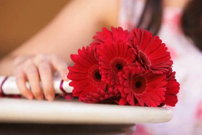 Simple Red Gerbera Bouquet