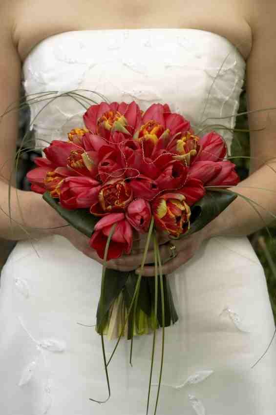 Red Parrot Tulip Bouquet