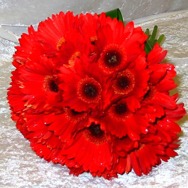 Bright Red Gerbera Bouquet