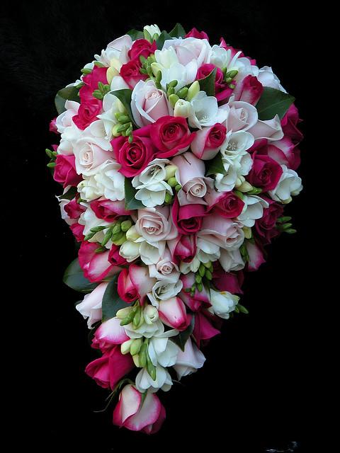 Teardrop Roses and Freesias