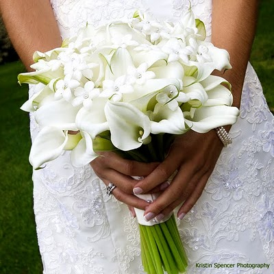 Stephanotis and White Callas