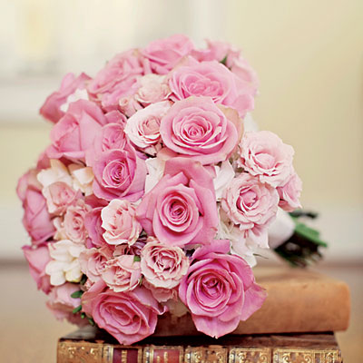 Pink and Pink Roses