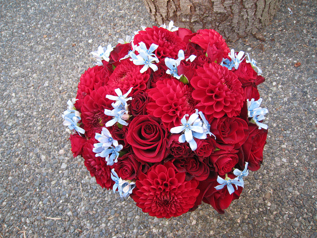 red blue bouquet