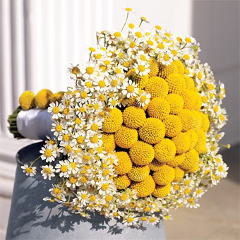 Yellow mums and billy balls bouquet wedding flower yellow bouquet mightylinksfo