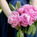 pink-peonies-bridemaides-bouquet