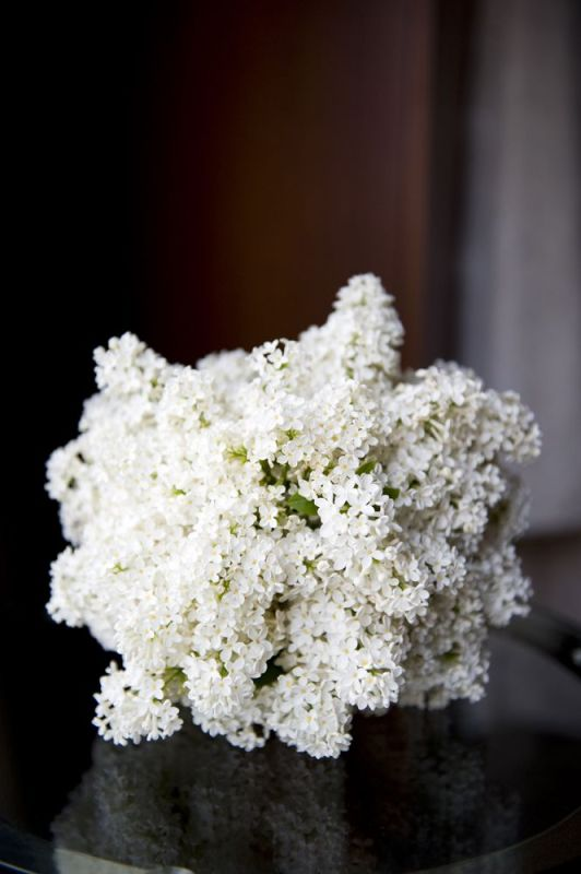 white lilac bouquet