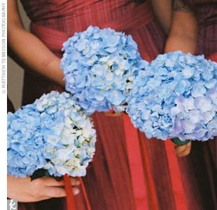 bridesmaids with blue hydrangeas