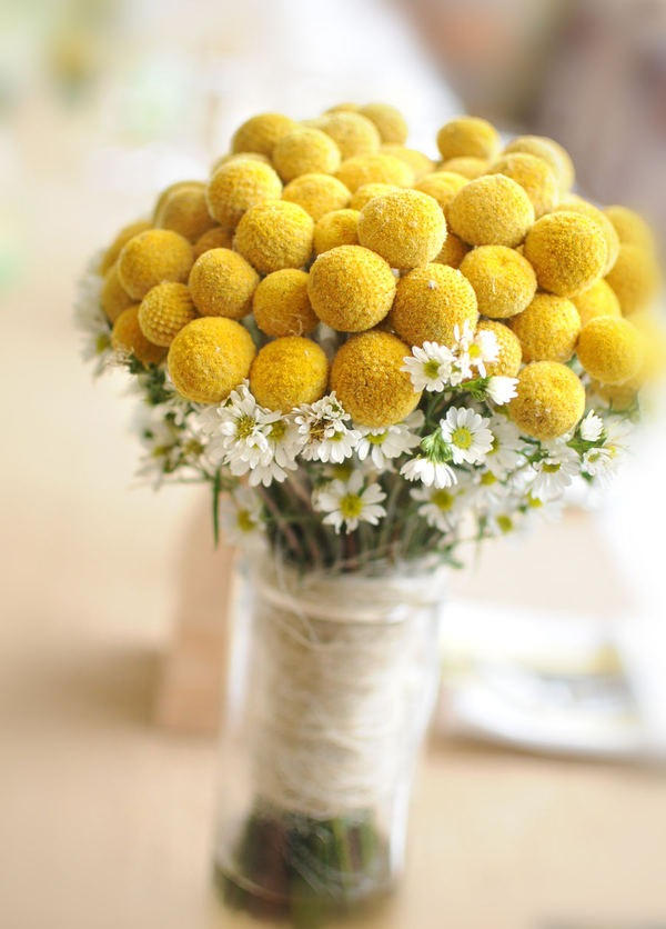 yellow billy buttons bouquet