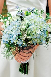 white waxflowers, larkspurs and hydrangeas