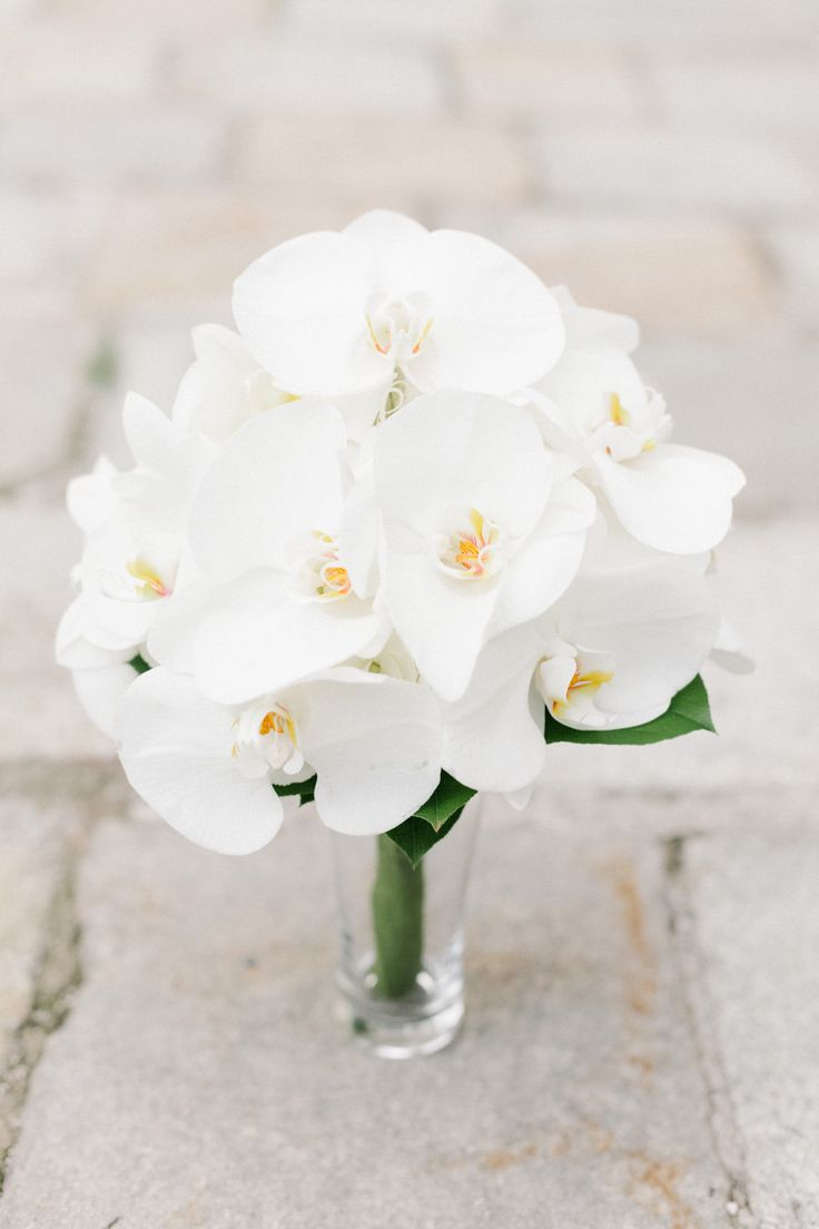 White Phalaenopsis Orchids Bouquet Wedding Flower