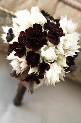 Bridal Bouquet with Chocolate Cosmos