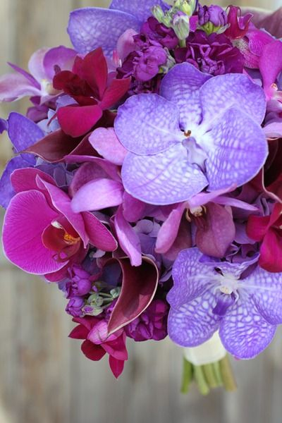 purple hydrangea, plum stock, deep purple calla lilies, and lavender mokara orchids with bright and fluttery accents of purple vanda, raspberry dendrobium, and fuchsia phalaenopsis orchid blooms