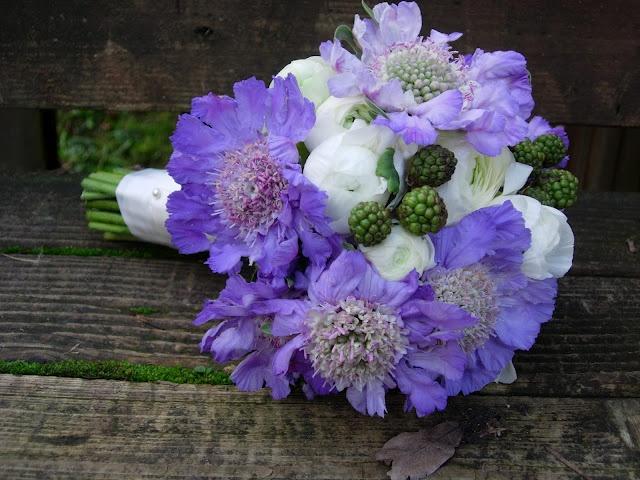 Scabiosa, White Ranunculus and Raspberry Bouquet