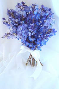 Only Delphinium Wedding Bouquet