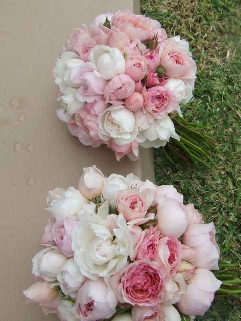 pale pink david austin roses bouquet bouquet wedding flower. Black Bedroom Furniture Sets. Home Design Ideas