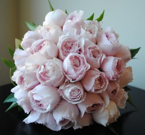 Pale Pink David Austin Roses Bouquet