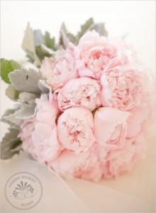 pale pink david austin roses bouquet bride