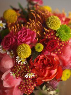 Bouquet of crispedia, orange prothea, red yarrow, green mums, pink peonies