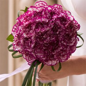 Purple variegated carnations and lily grass
