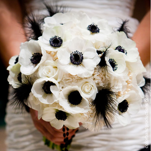 White anemones, roses, carnations and black ostrich feathers