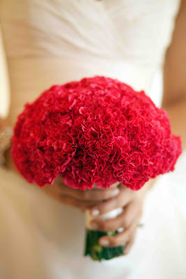 Just Red Carnations
