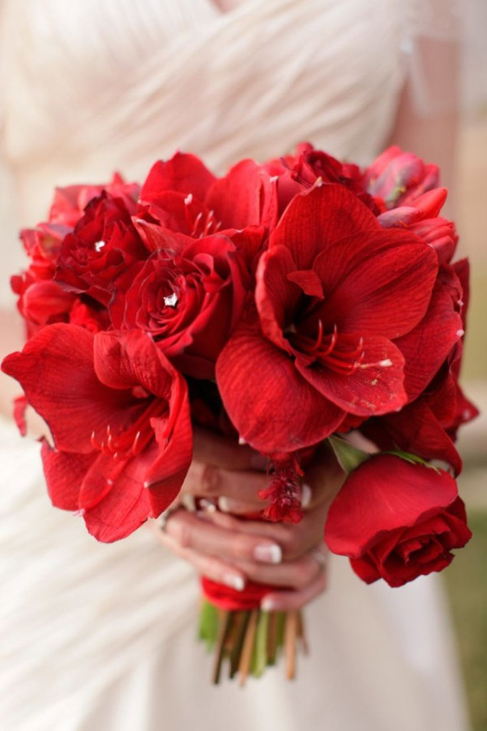 Red Bouquet of Roses and Hibiscus