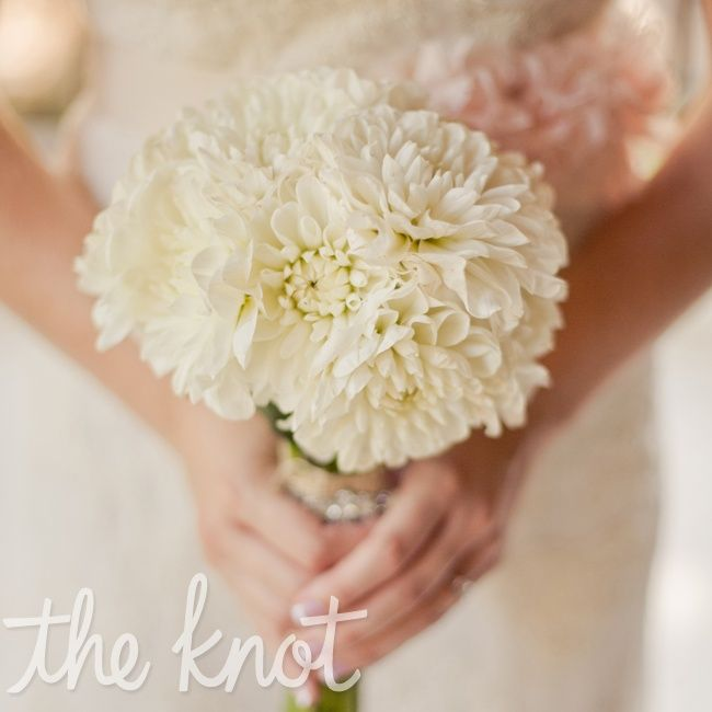 White dahlias only bouquet